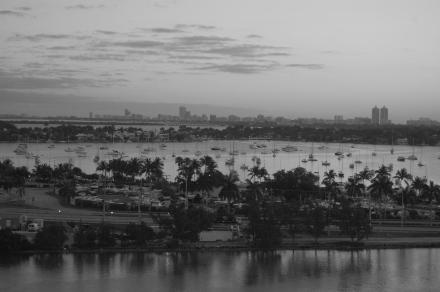 Dawn in Miami